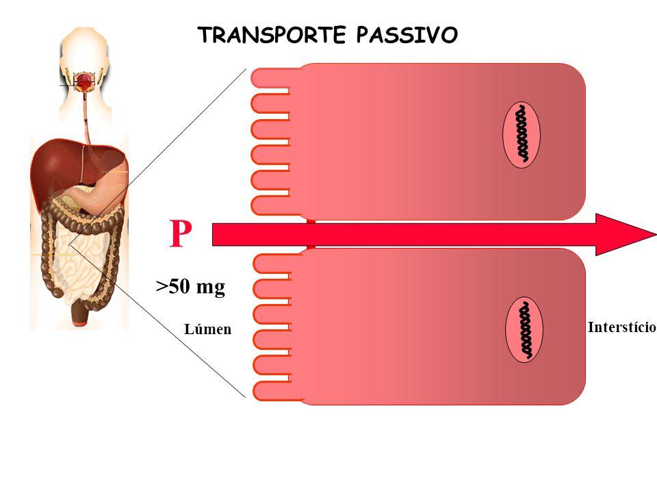 TRANSPORTE PASSIVO P Ca >50 mg Lúmen Interstício
