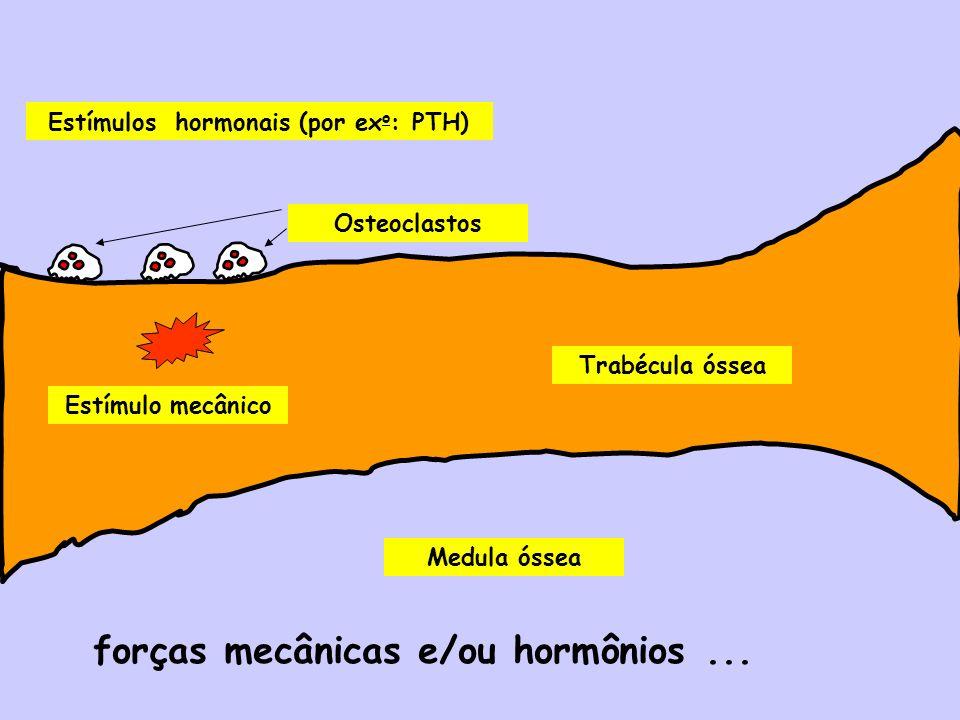 Estímulos hormonais (por exo: PTH)