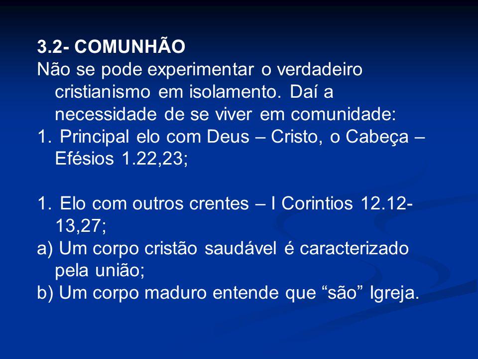 3.2- COMUNHÃO Não se pode experimentar o verdadeiro cristianismo em isolamento. Daí a necessidade de se viver em comunidade: