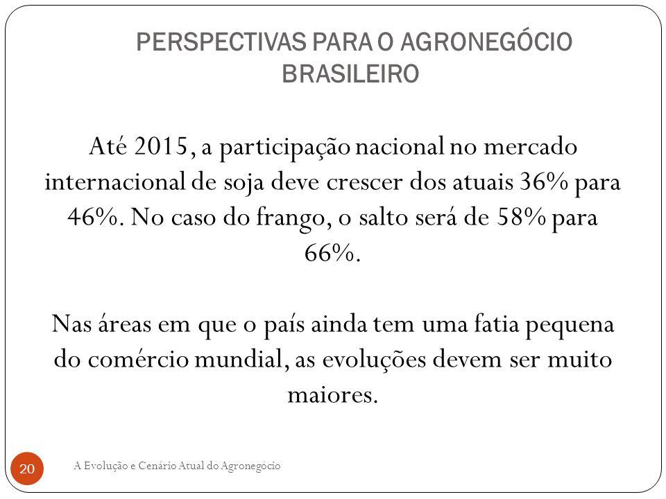PERSPECTIVAS PARA O AGRONEGÓCIO BRASILEIRO