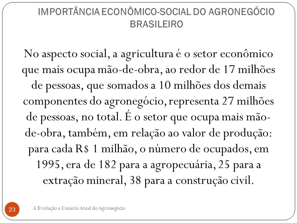 IMPORTÂNCIA ECONÔMICO-SOCIAL DO AGRONEGÓCIO BRASILEIRO