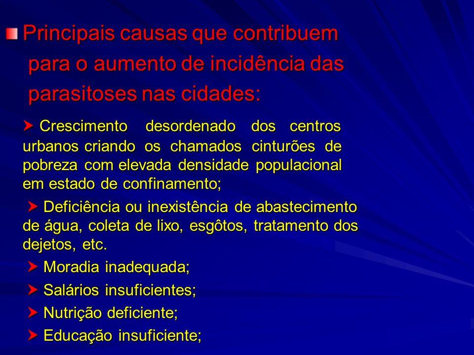 Principais causas que contribuem para o aumento de incidência das