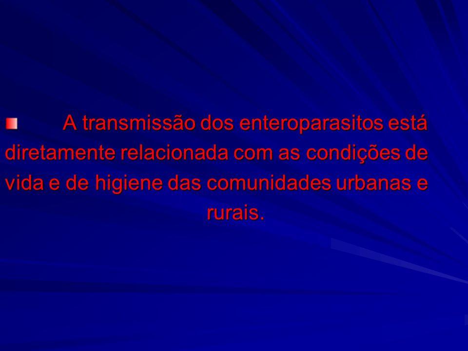 A transmissão dos enteroparasitos está