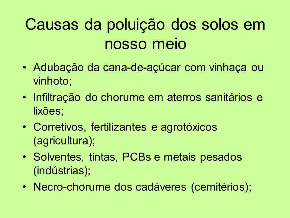 Causas da poluição dos solos em nosso meio