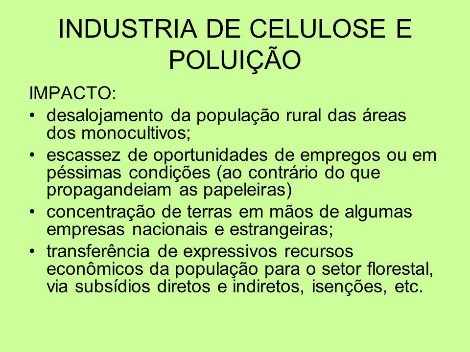 INDUSTRIA DE CELULOSE E POLUIÇÃO