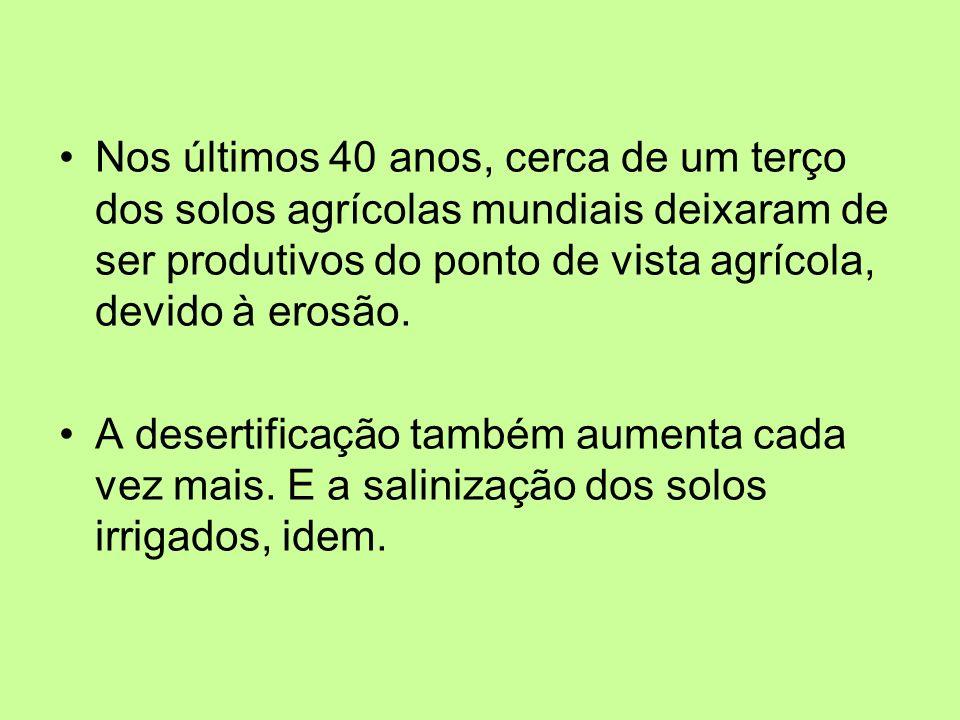 Nos últimos 40 anos, cerca de um terço dos solos agrícolas mundiais deixaram de ser produtivos do ponto de vista agrícola, devido à erosão.