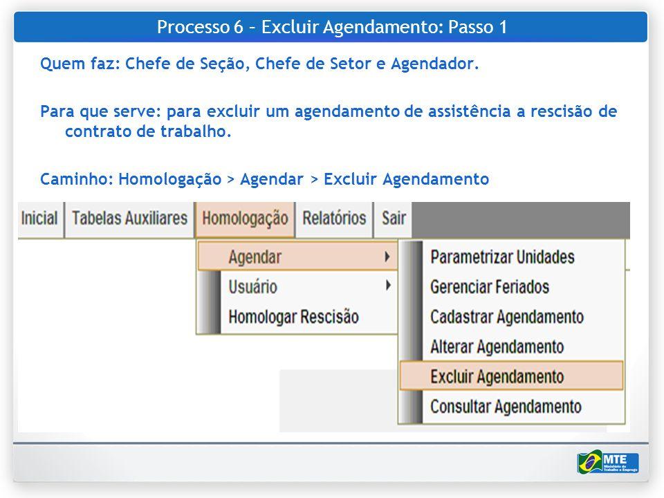 Processo 6 – Excluir Agendamento: Passo 1