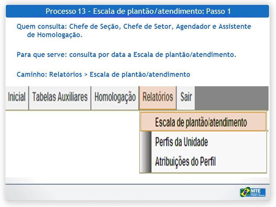 Processo 13 – Escala de plantão/atendimento: Passo 1