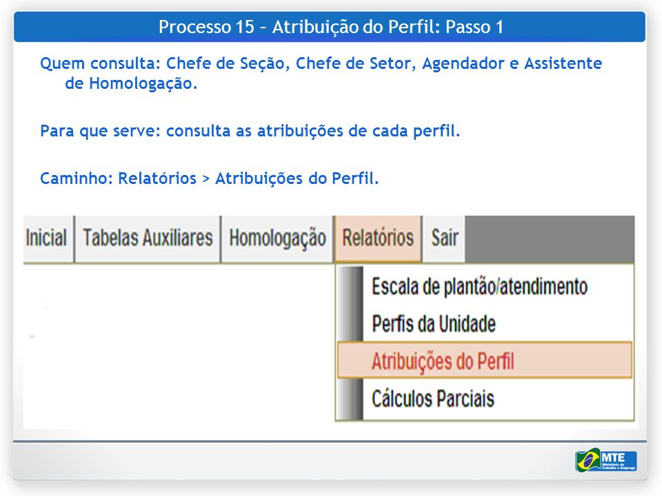 Processo 15 – Atribuição do Perfil: Passo 1