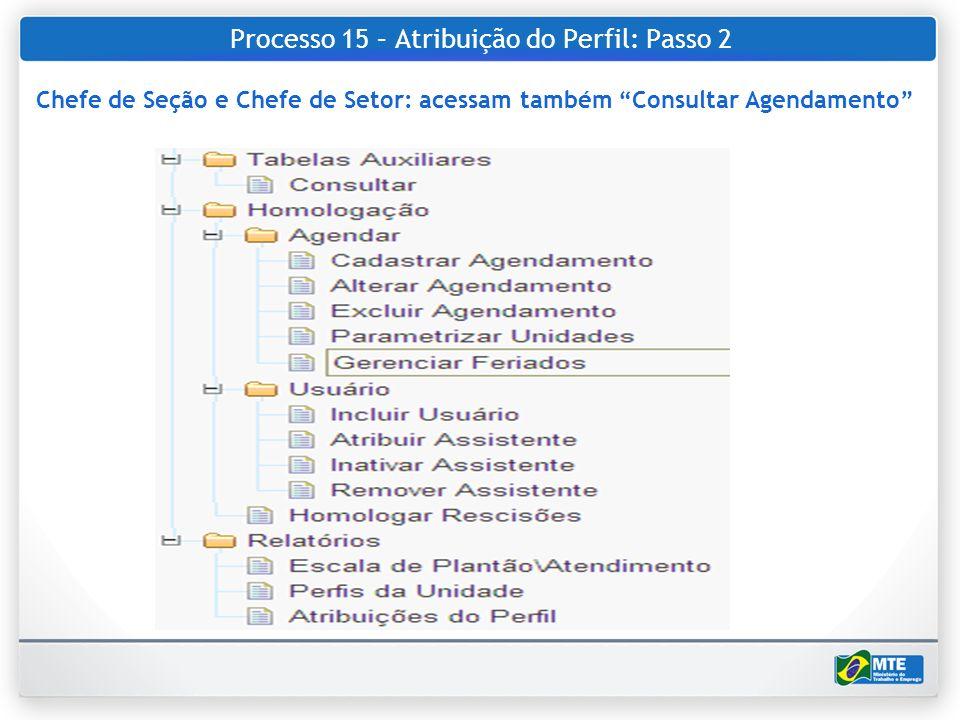 Processo 15 – Atribuição do Perfil: Passo 2