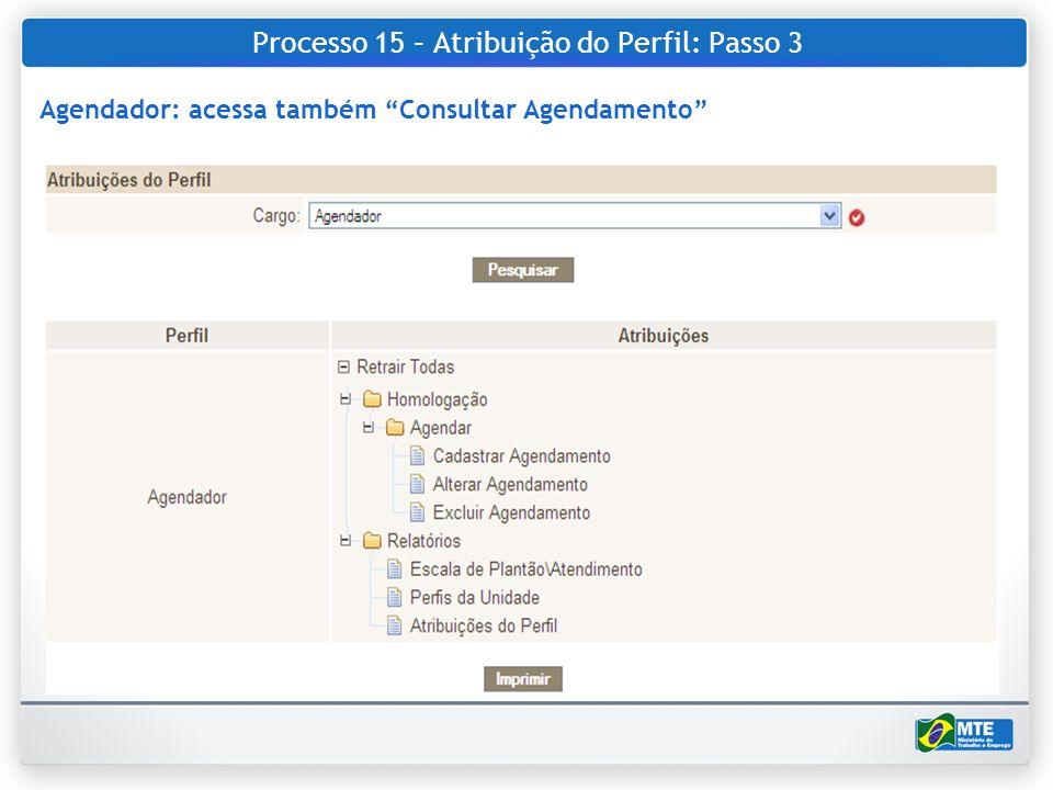 Processo 15 – Atribuição do Perfil: Passo 3
