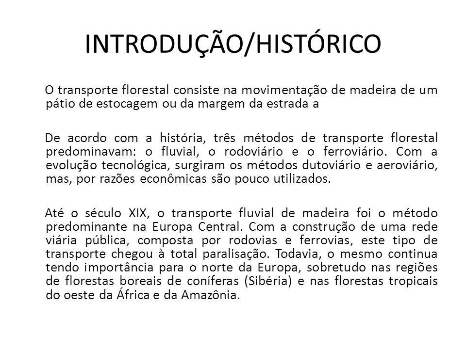 INTRODUÇÃO/HISTÓRICO