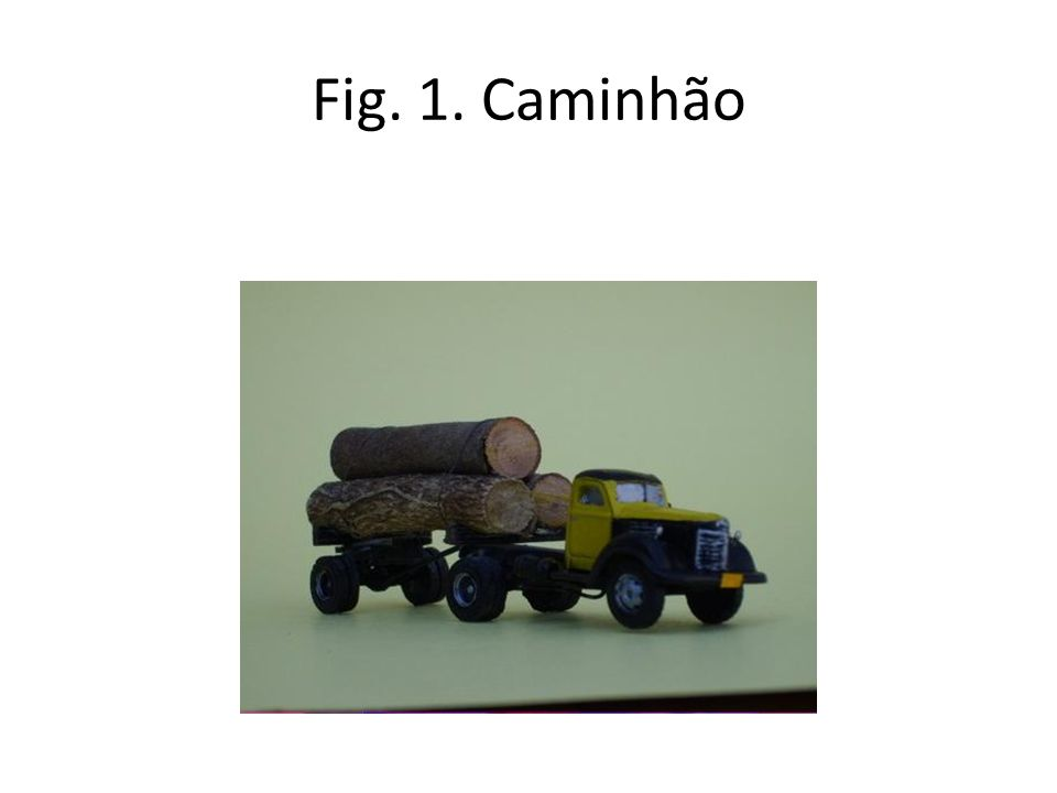Fig. 1. Caminhão