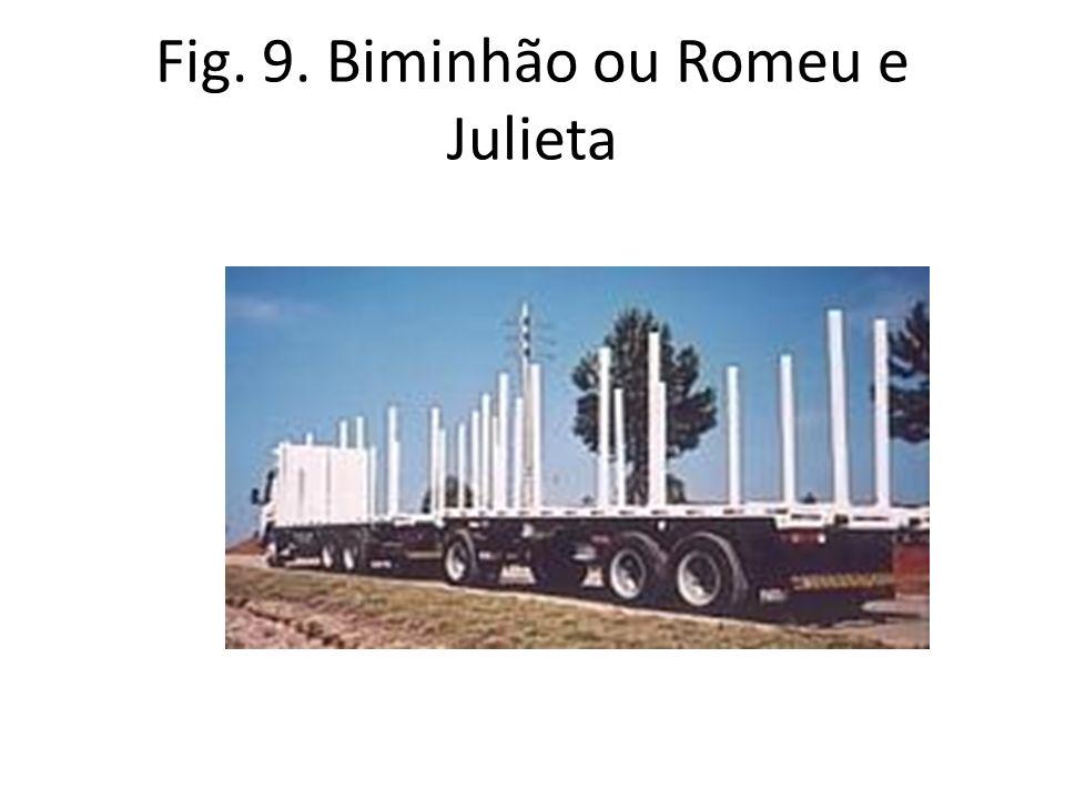 Fig. 9. Biminhão ou Romeu e Julieta