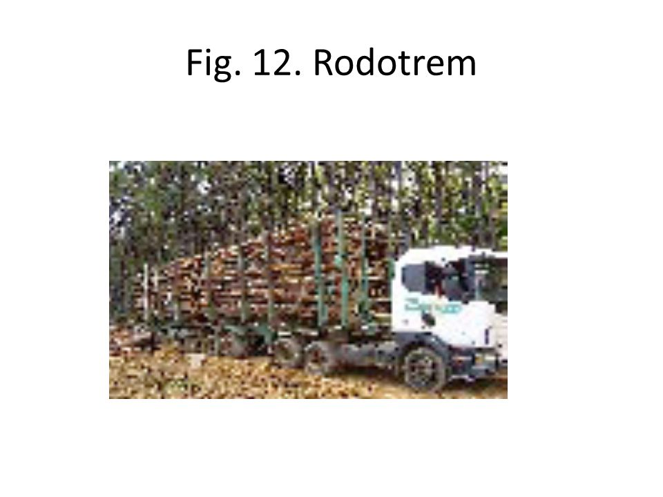 Fig. 12. Rodotrem