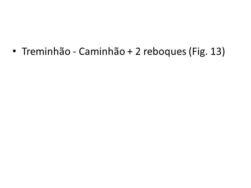 Treminhão - Caminhão + 2 reboques (Fig. 13)