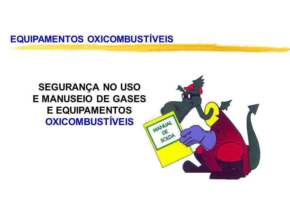 SEGURANÇA NO USO E MANUSEIO DE GASES E EQUIPAMENTOS OXICOMBUSTÍVEIS