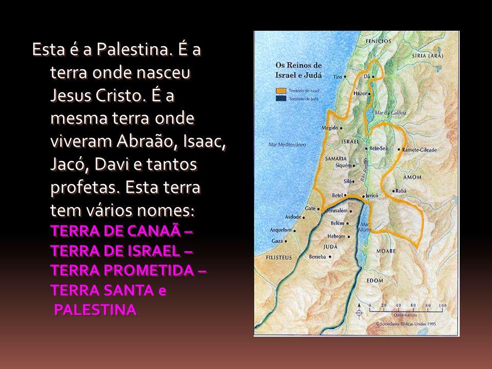 Esta é a Palestina. É a terra onde nasceu Jesus Cristo