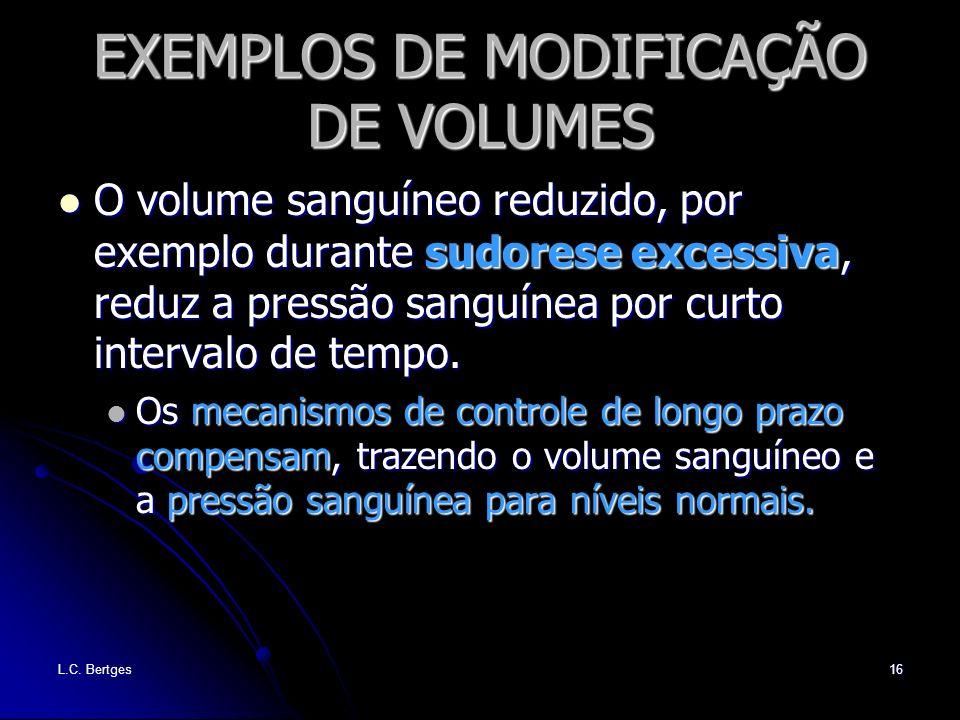 EXEMPLOS DE MODIFICAÇÃO DE VOLUMES
