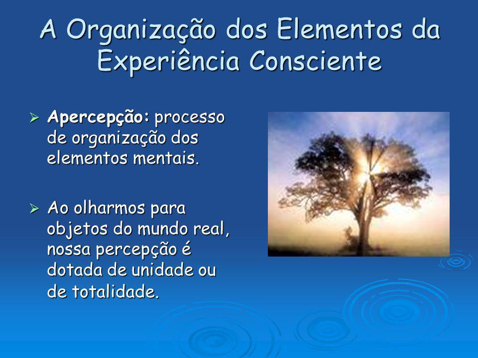 A Organização dos Elementos da Experiência Consciente