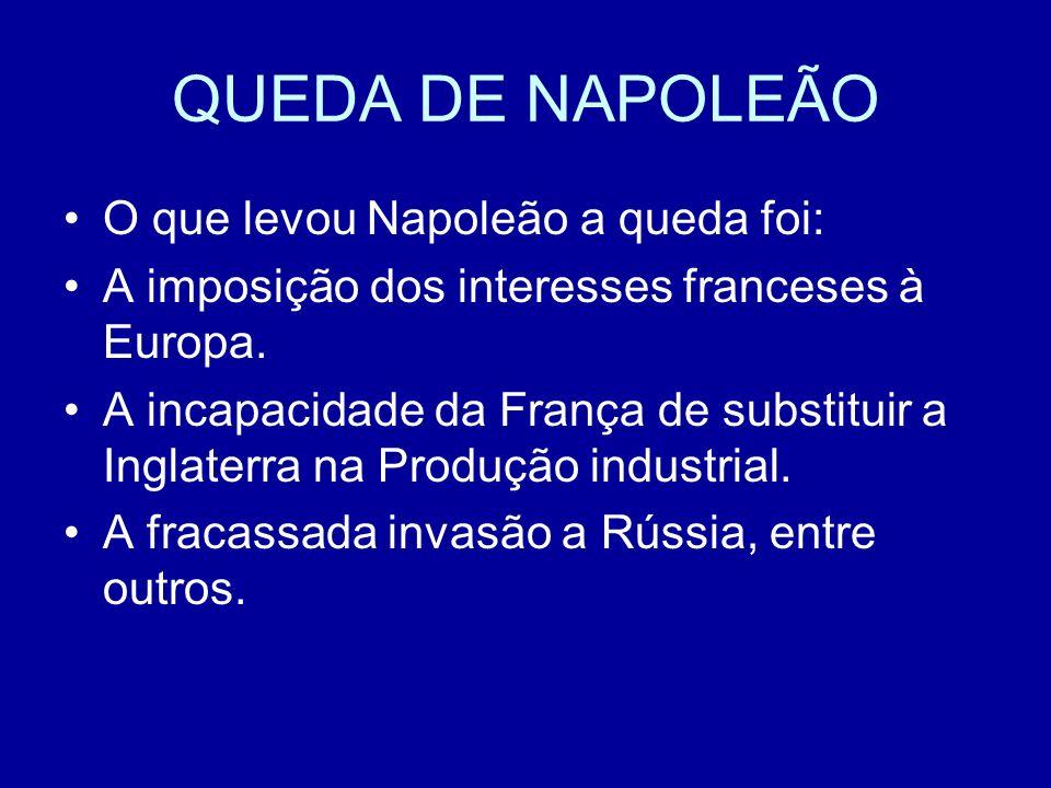 QUEDA DE NAPOLEÃO O que levou Napoleão a queda foi: