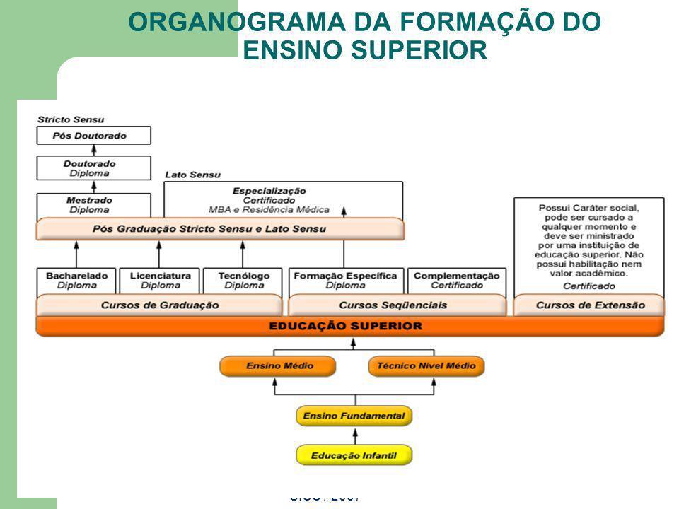 ORGANOGRAMA DA FORMAÇÃO DO ENSINO SUPERIOR