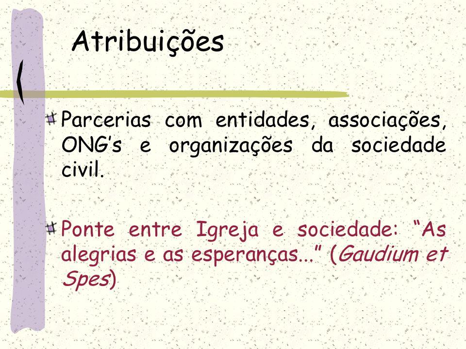 Atribuições Parcerias com entidades, associações, ONG's e organizações da sociedade civil.