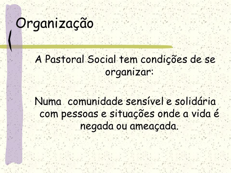 A Pastoral Social tem condições de se organizar: