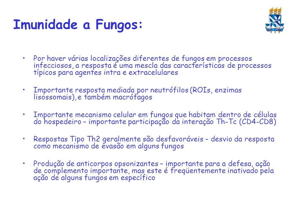 Imunidade a Fungos: