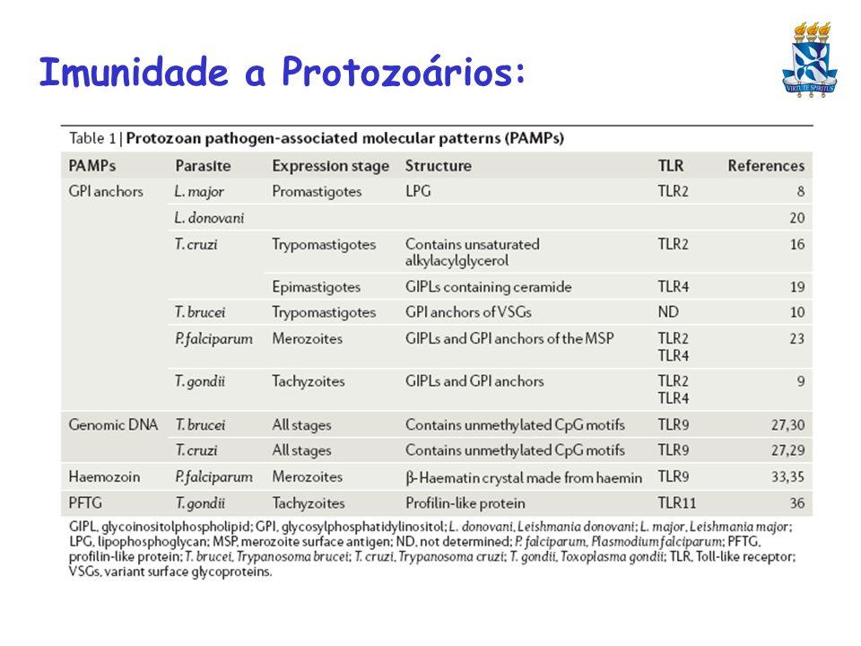 Imunidade a Protozoários: