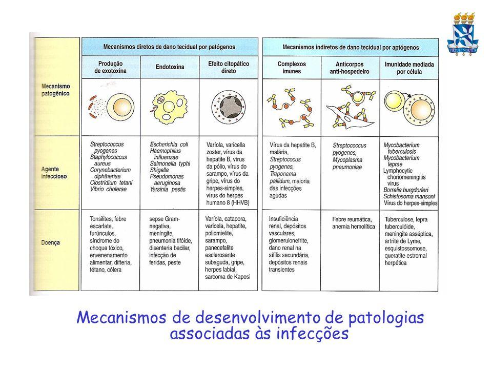Mecanismos de desenvolvimento de patologias associadas às infecções
