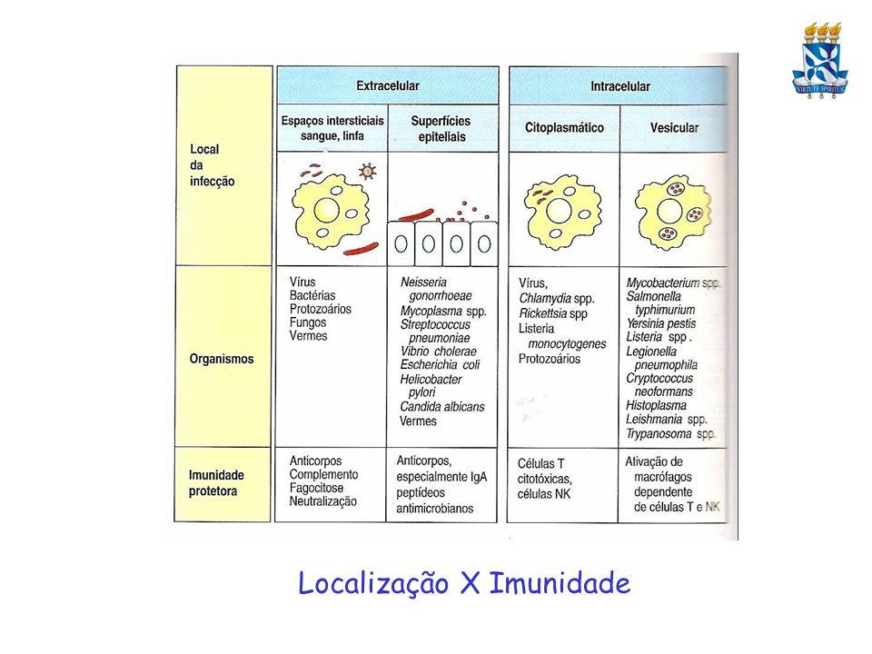 Localização X Imunidade
