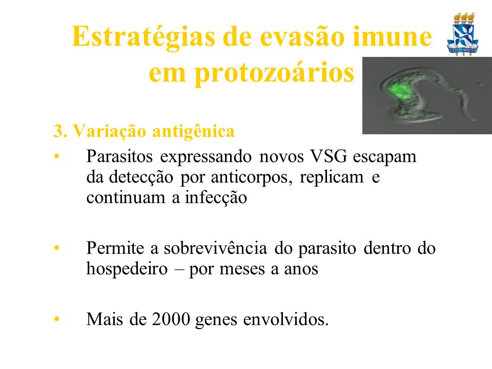 Estratégias de evasão imune em protozoários