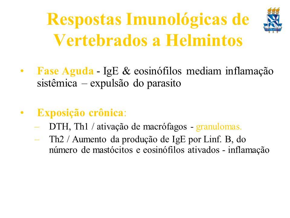 Respostas Imunológicas de Vertebrados a Helmintos