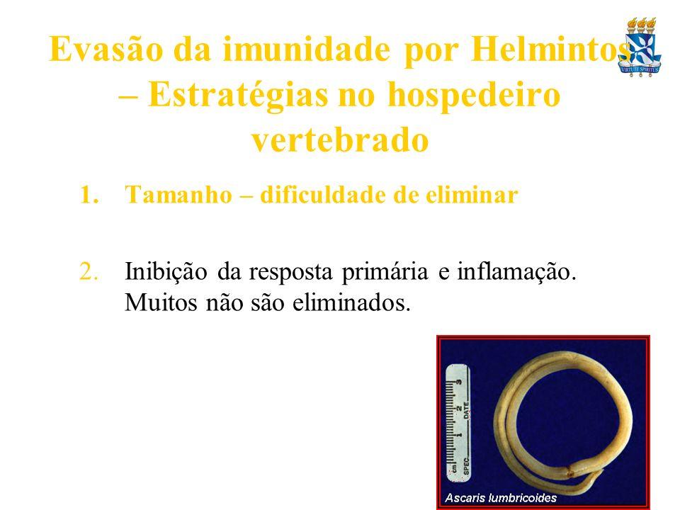 Evasão da imunidade por Helmintos – Estratégias no hospedeiro vertebrado