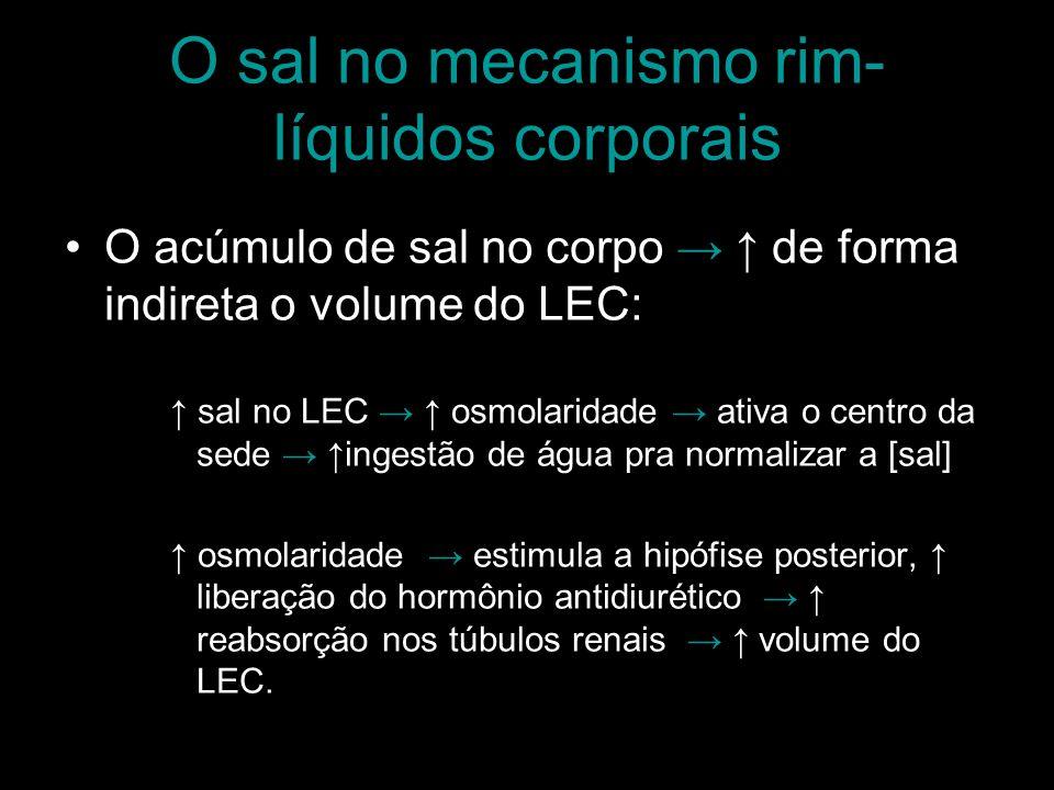 O sal no mecanismo rim-líquidos corporais