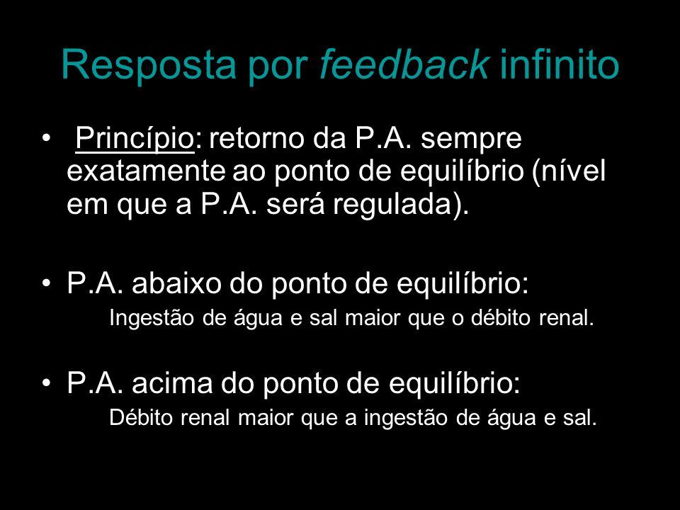 Resposta por feedback infinito