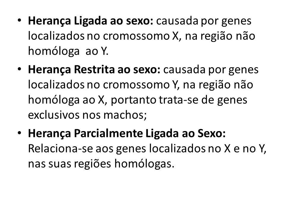 Herança Ligada ao sexo: causada por genes localizados no cromossomo X, na região não homóloga ao Y.