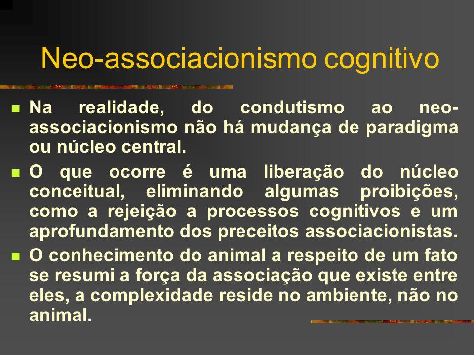 Neo-associacionismo cognitivo