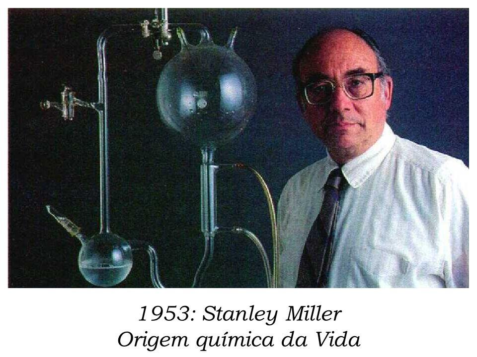 1953: Stanley Miller Origem química da Vida