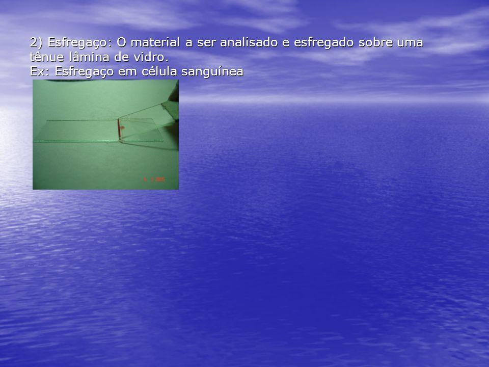 2) Esfregaço: O material a ser analisado e esfregado sobre uma tênue lâmina de vidro.