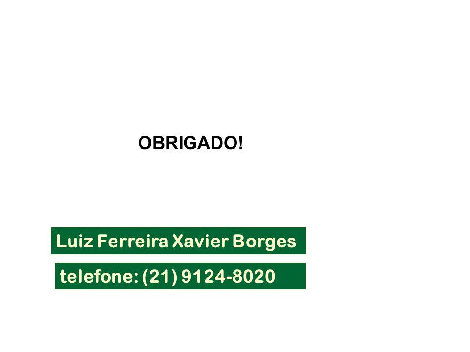 OBRIGADO! Luiz Ferreira Xavier Borges telefone: (21) 9124-8020