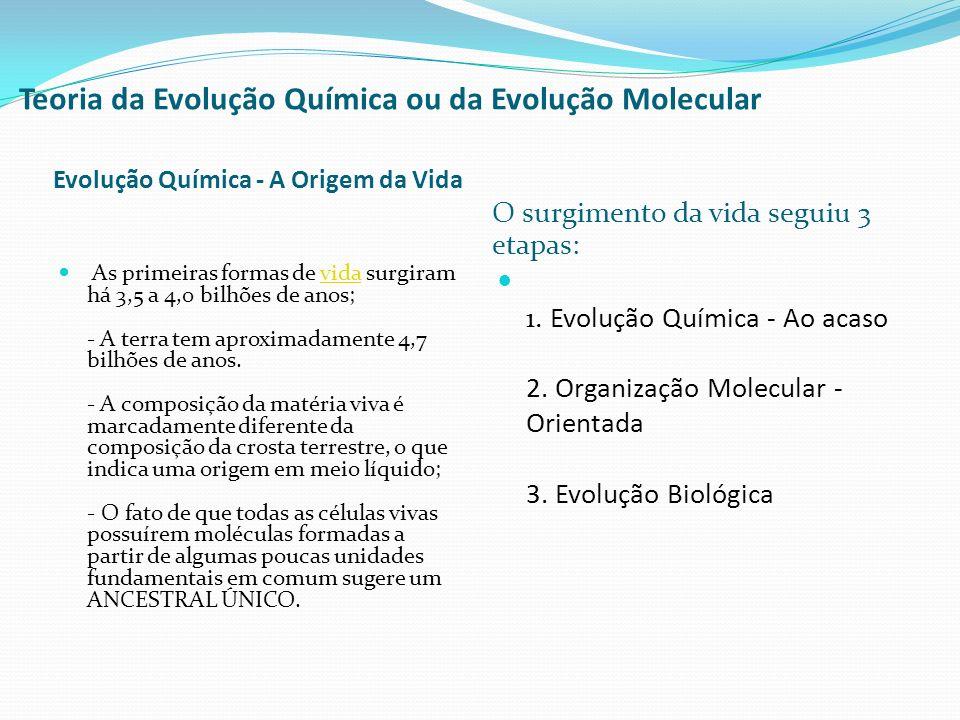 Teoria da Evolução Química ou da Evolução Molecular