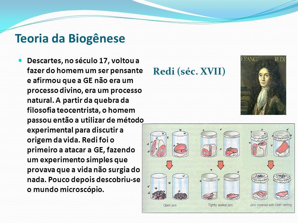 Teoria da Biogênese Redi (séc. XVII)