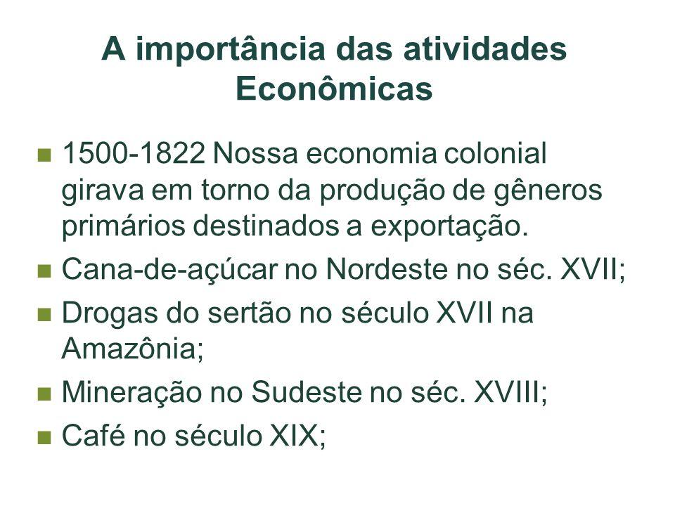 A importância das atividades Econômicas
