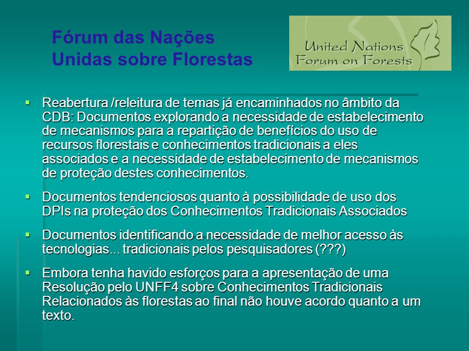 Fórum das Nações Unidas sobre Florestas