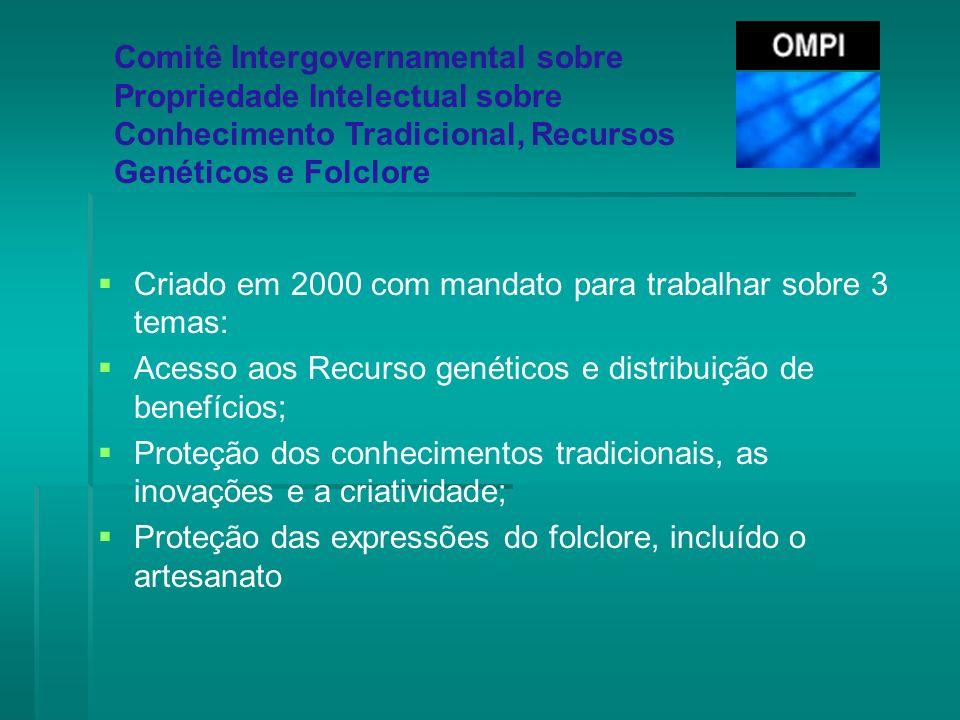 Comitê Intergovernamental sobre Propriedade Intelectual sobre Conhecimento Tradicional, Recursos Genéticos e Folclore