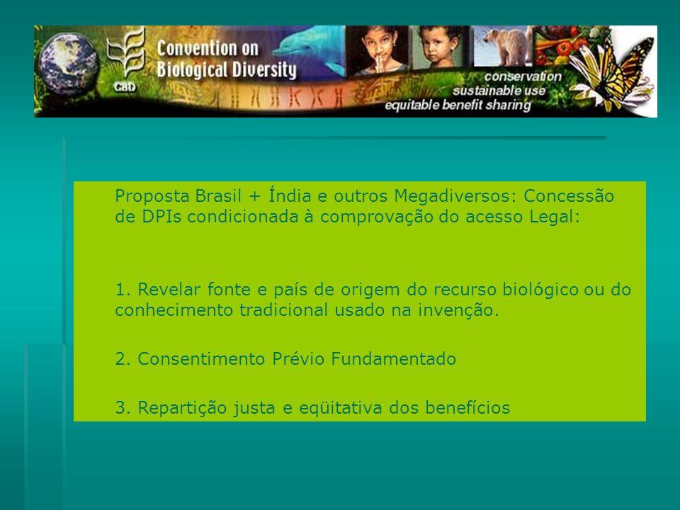 Proposta Brasil + Índia e outros Megadiversos: Concessão de DPIs condicionada à comprovação do acesso Legal: