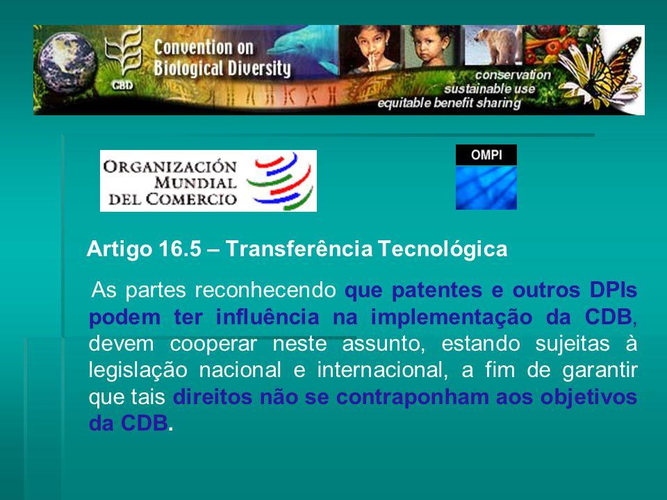 Artigo 16.5 – Transferência Tecnológica