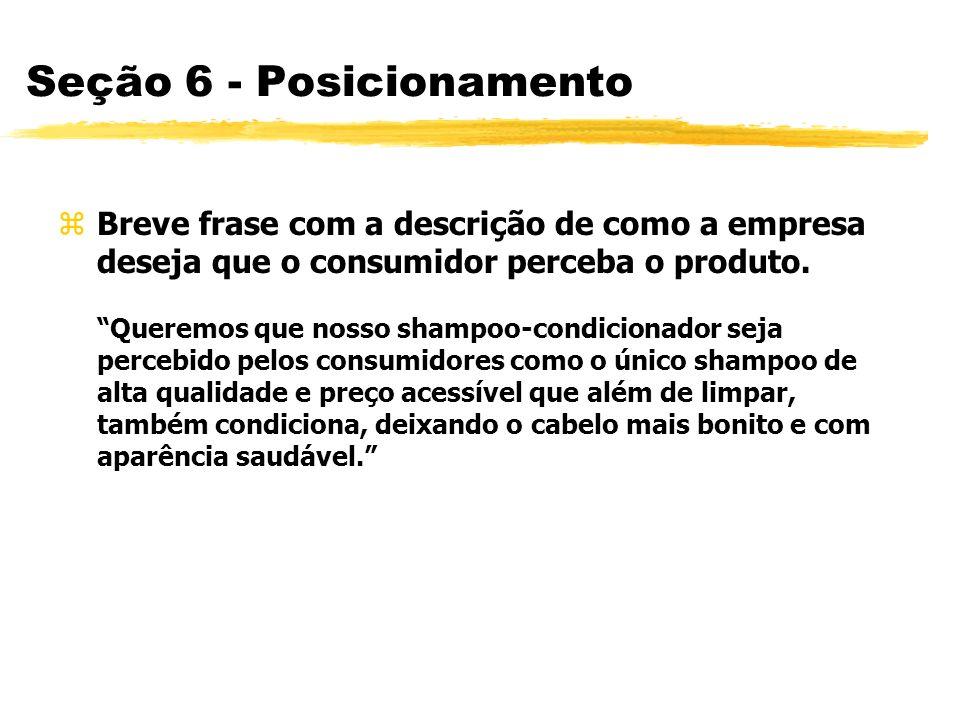 Seção 6 - Posicionamento